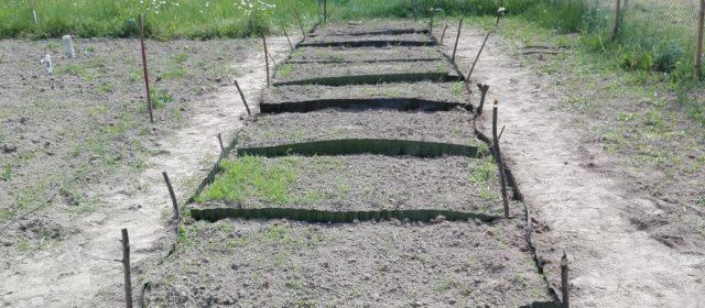 Adding fences to biochar test-sites