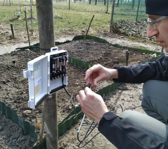New Em50 datalogger on biochar plots