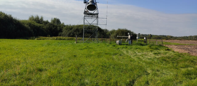 Measurements on Bubnow Wetland